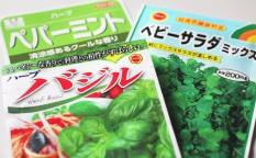 150212_vegetable_seed_01