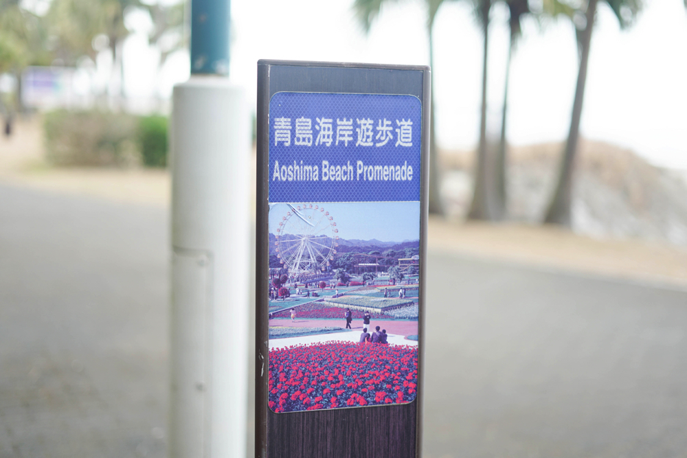 青島海岸散歩