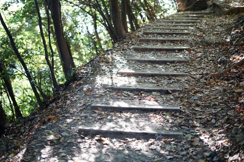 171112 takaosan hiking 17