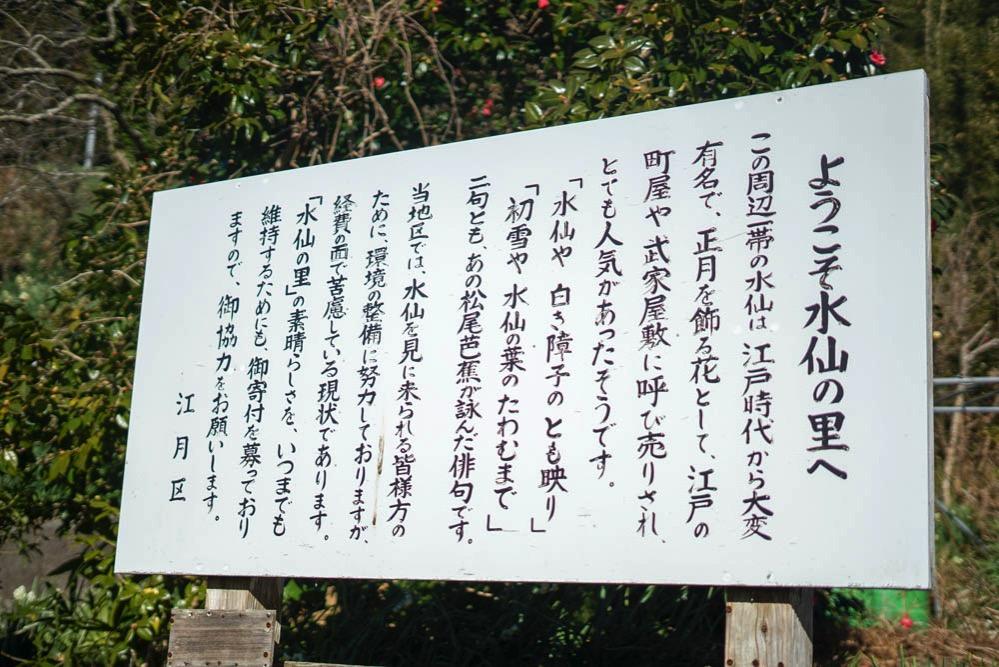 180103 ezuki suisen road 29