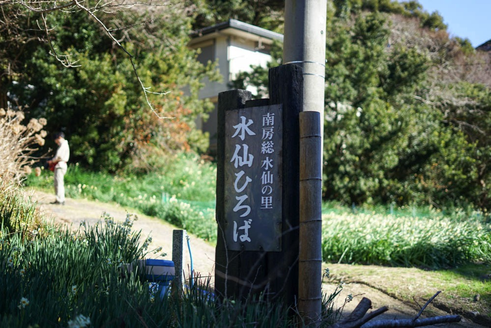 180103 ezuki suisen road 31