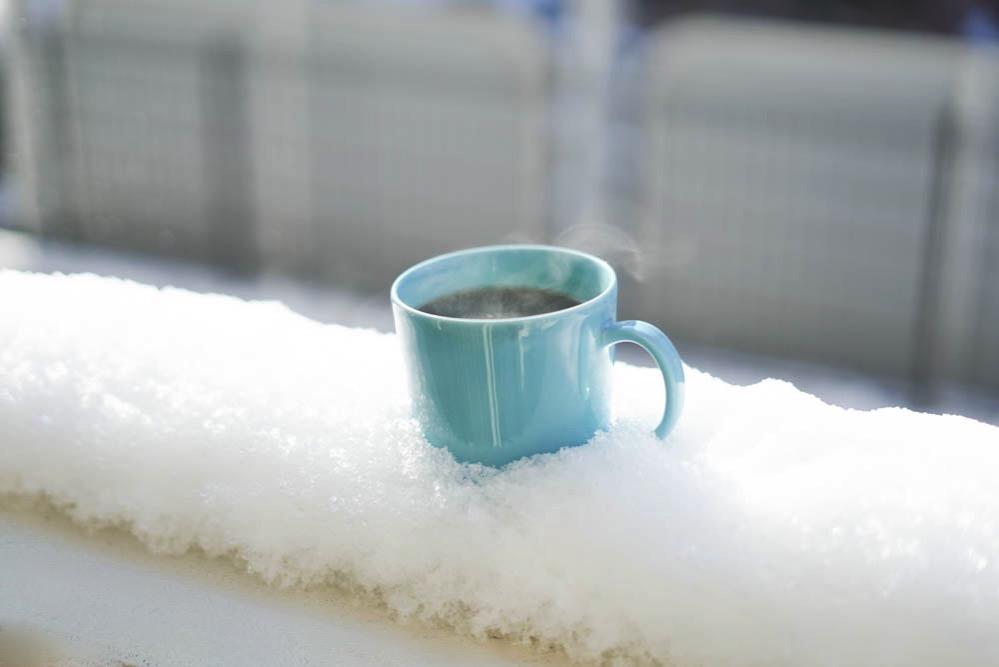 180122 snow day jan 2018 01