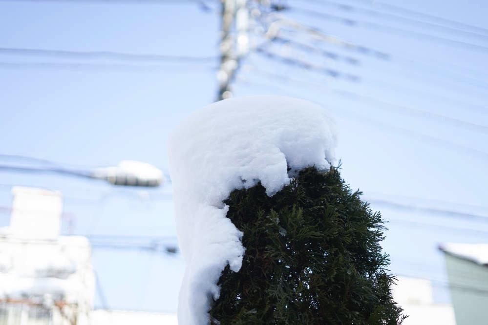 180122 snow day jan 2018 03