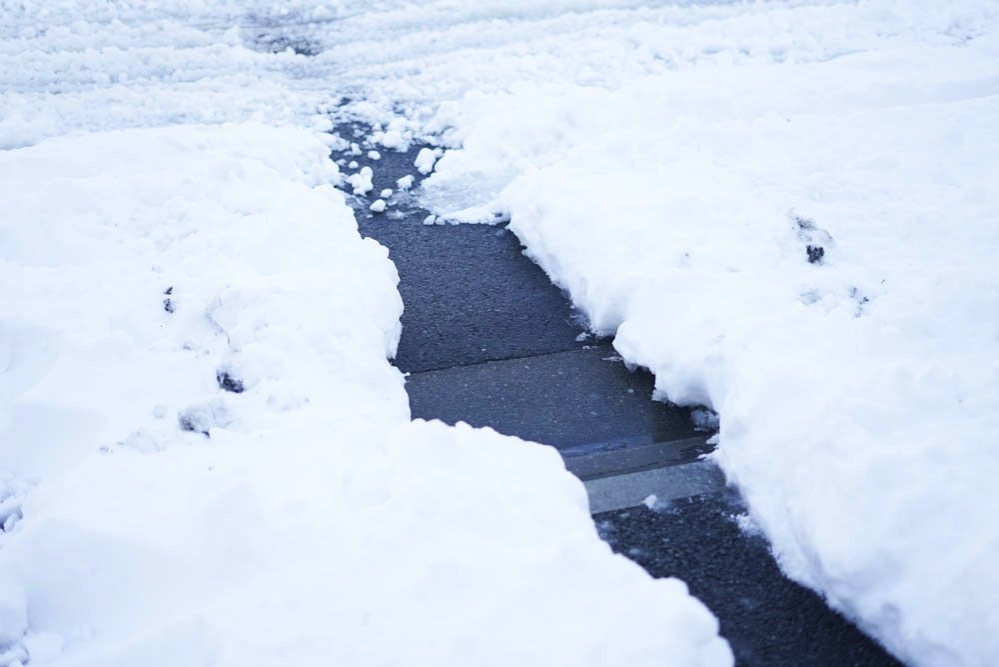 180122 snow day jan 2018 04