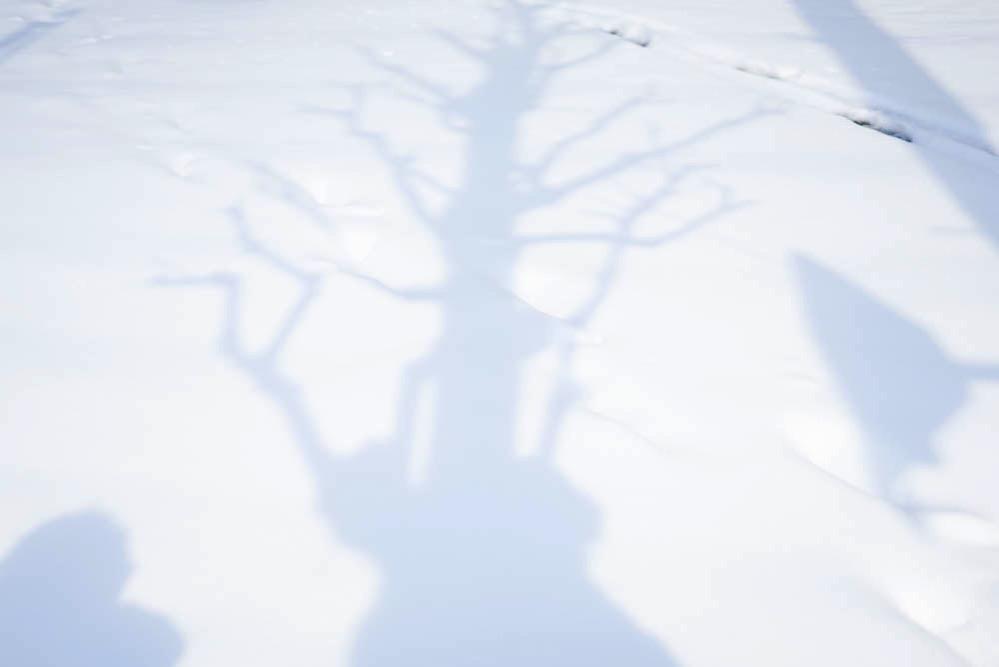 180122 snow day jan 2018 06