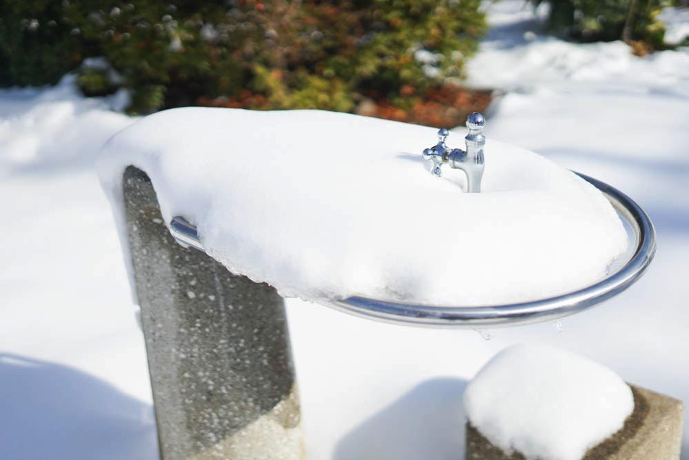180122 snow day jan 2018 09