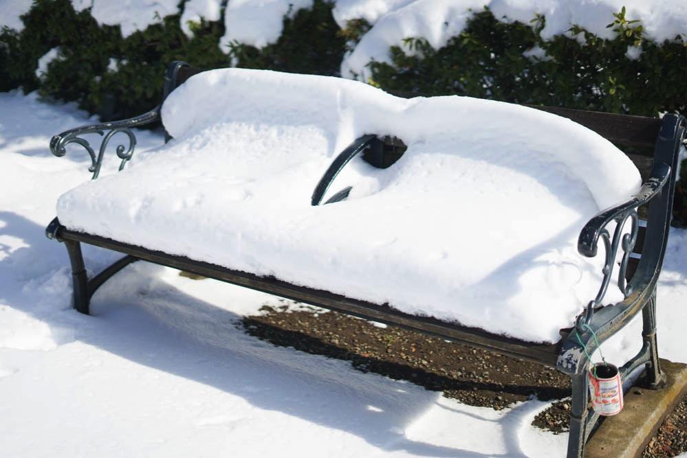 180122 snow day jan 2018 10