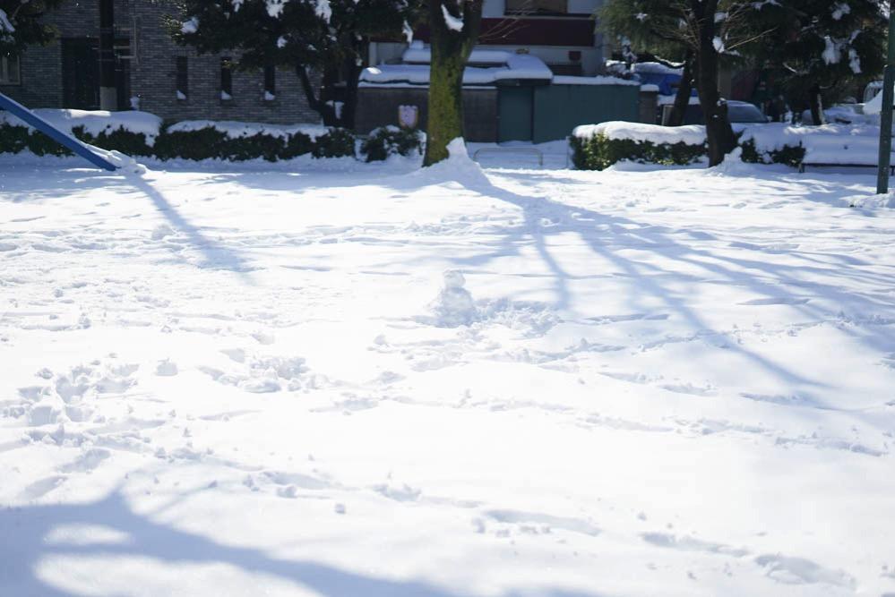 180122 snow day jan 2018 11