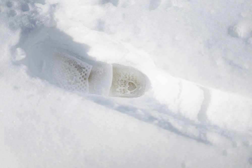 180122 snow day jan 2018 12