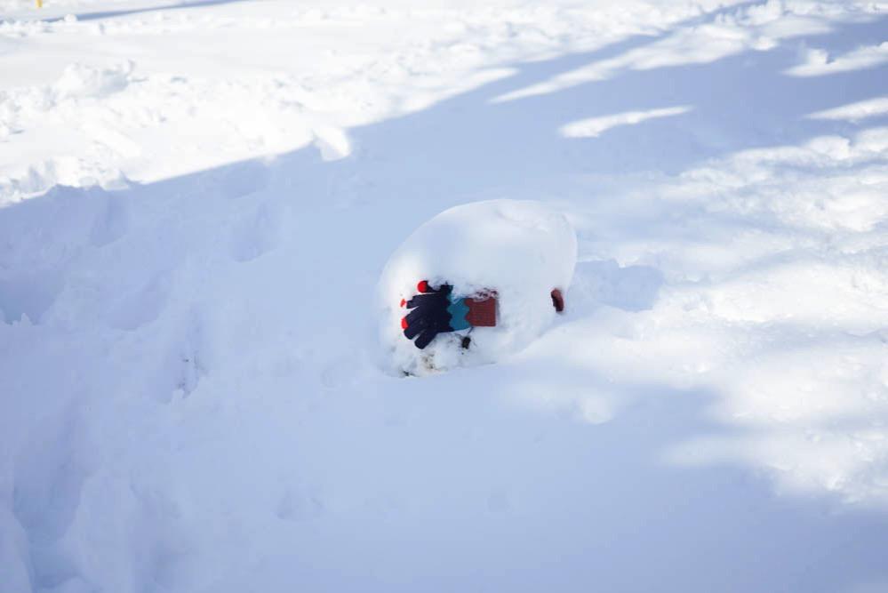 180122 snow day jan 2018 13