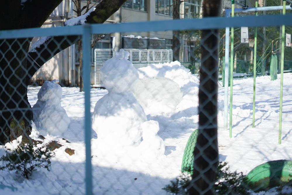 180122 snow day jan 2018 14