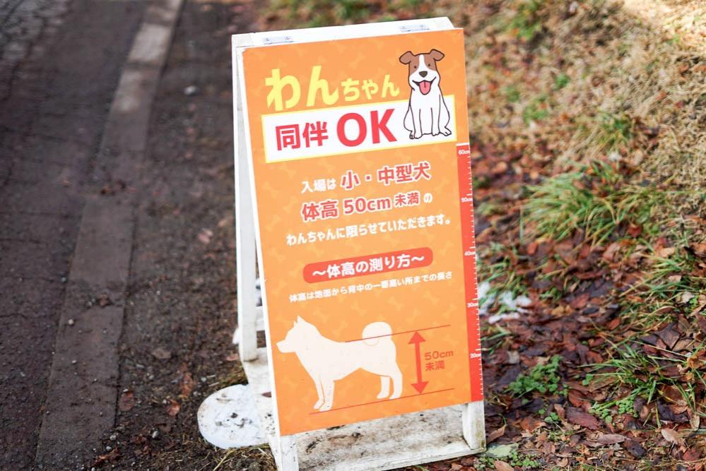 180203 kofu sagamiko kawagoe 210
