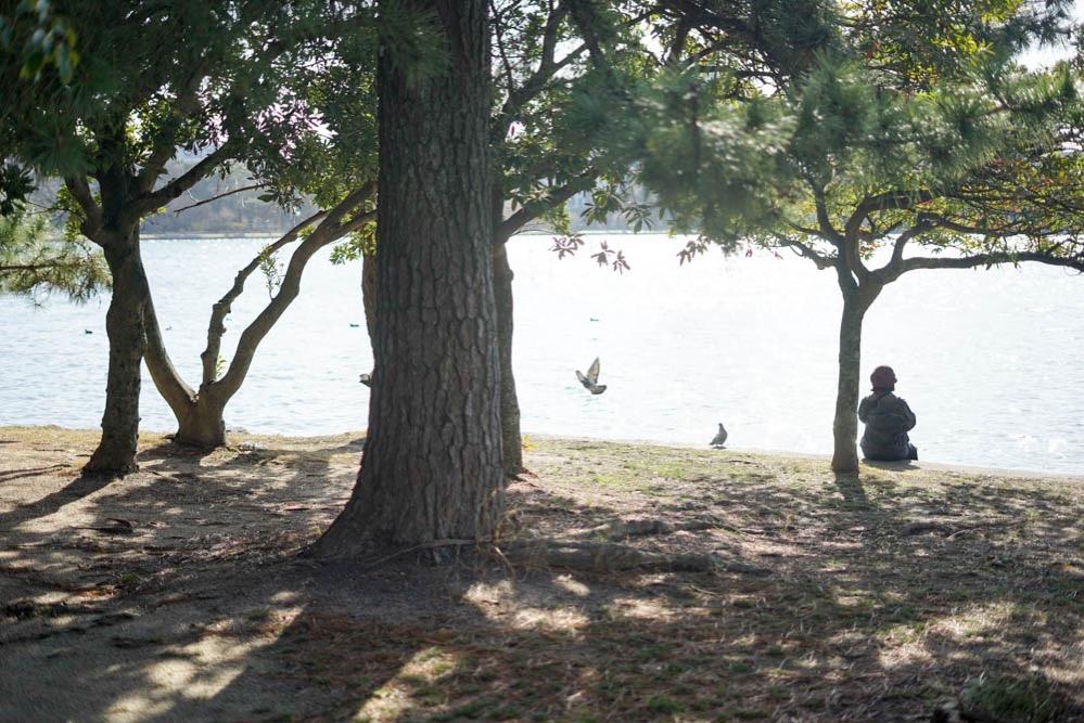 180312 fukuoka ohori park 14