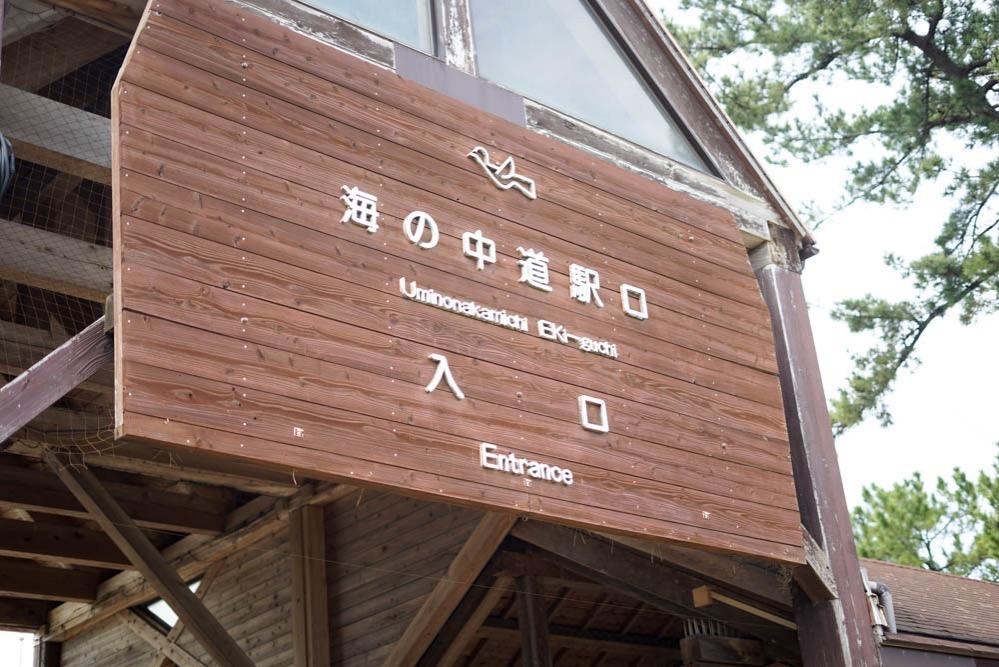 180315 fukuoka uminonakamichi 10