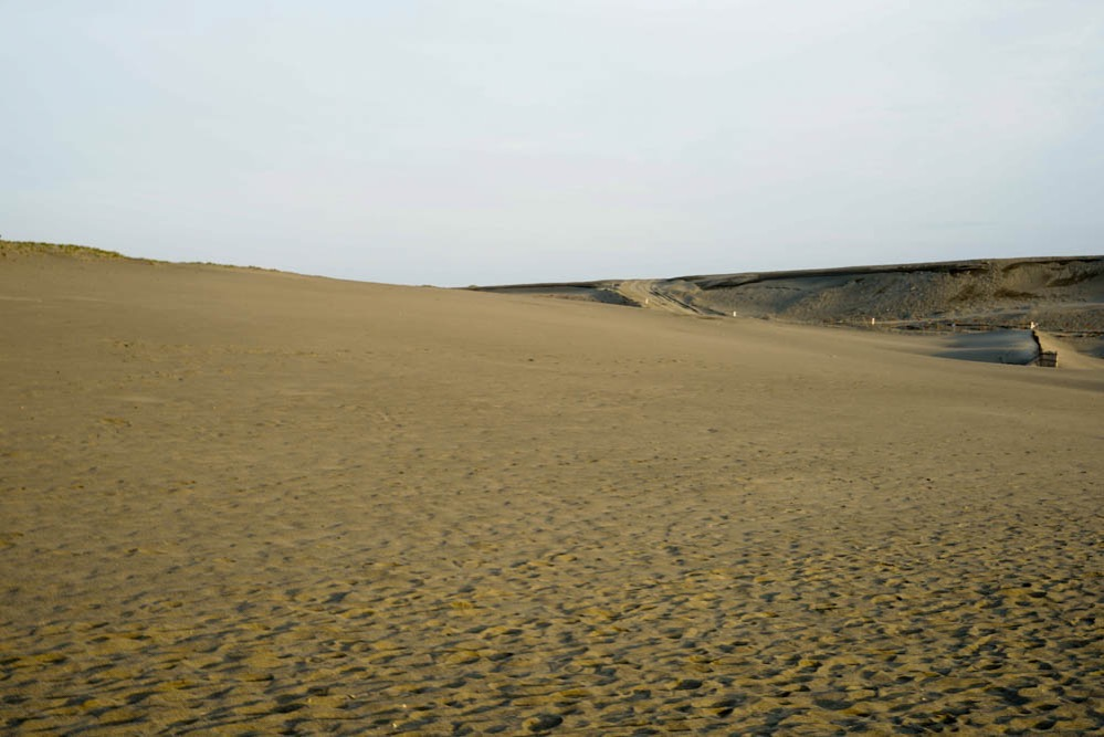 180411 hamamatsu nakatajima sand dune 12