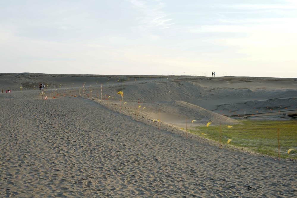180411 hamamatsu nakatajima sand dune 13
