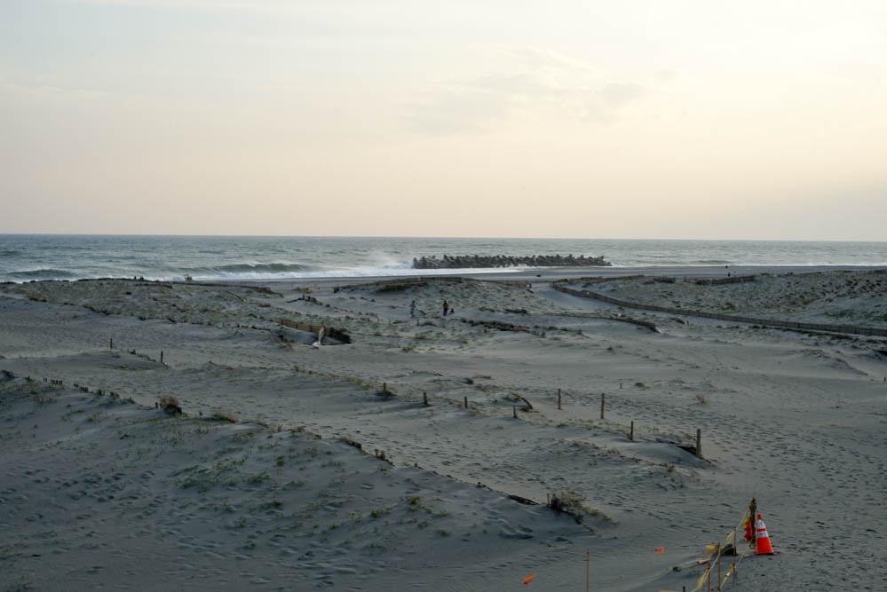 180411 hamamatsu nakatajima sand dune 15