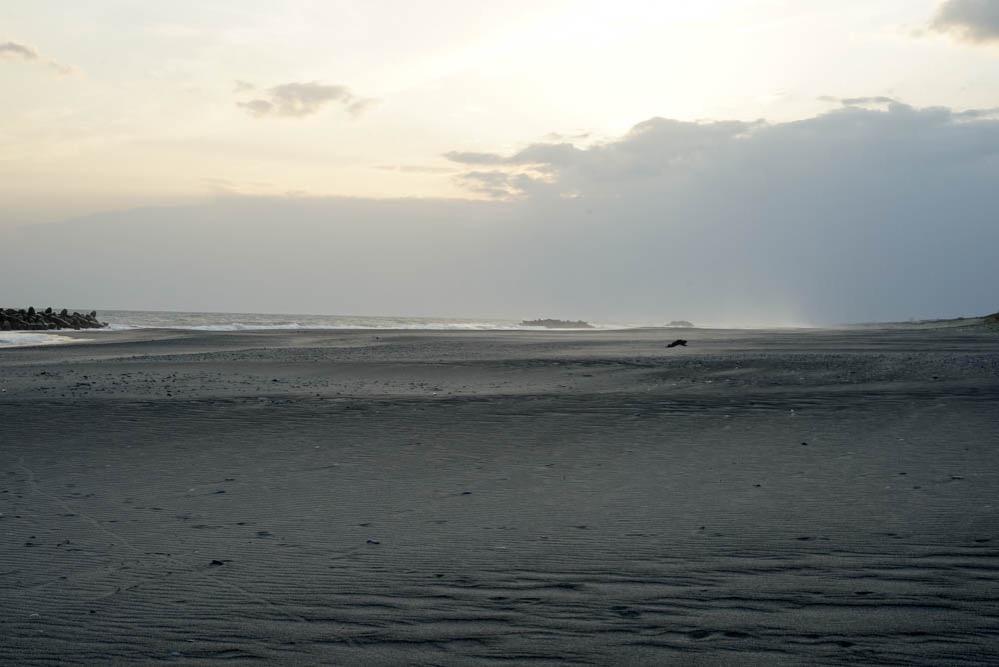 180411 hamamatsu nakatajima sand dune 18