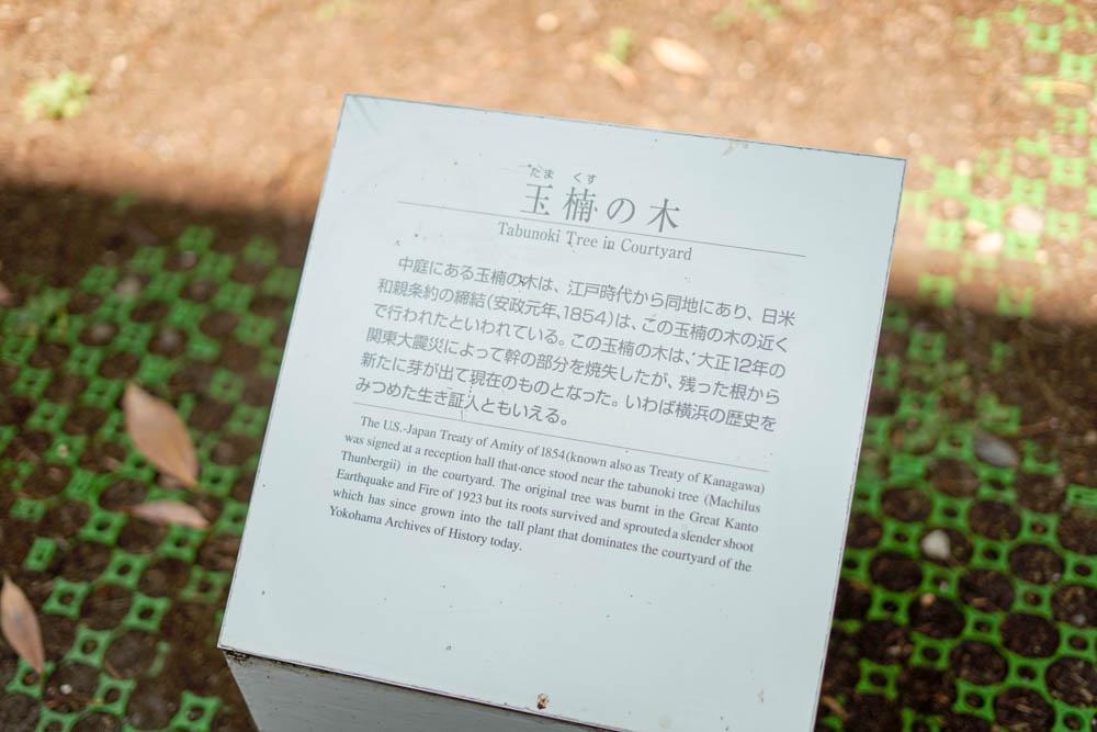 180704 pic photowalk yokohama 05