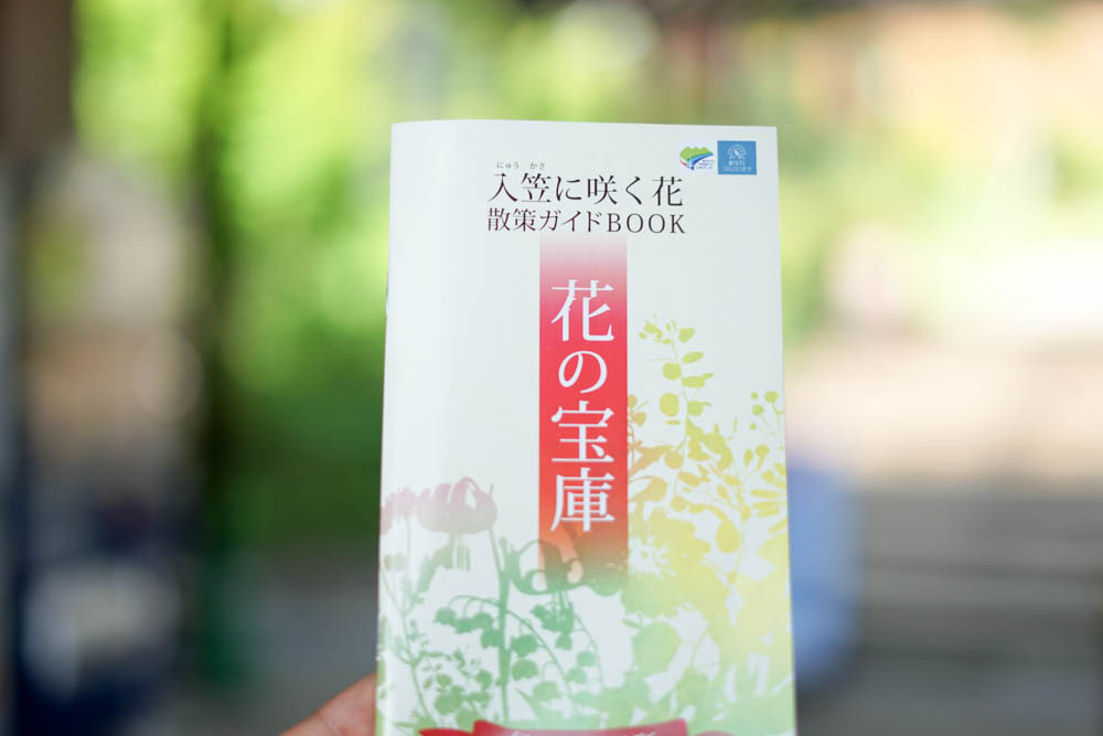 180806 yamanashi nyukasayama 11