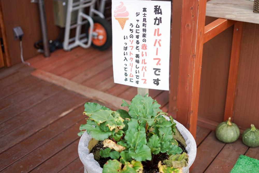 180806 yamanashi nyukasayama 67