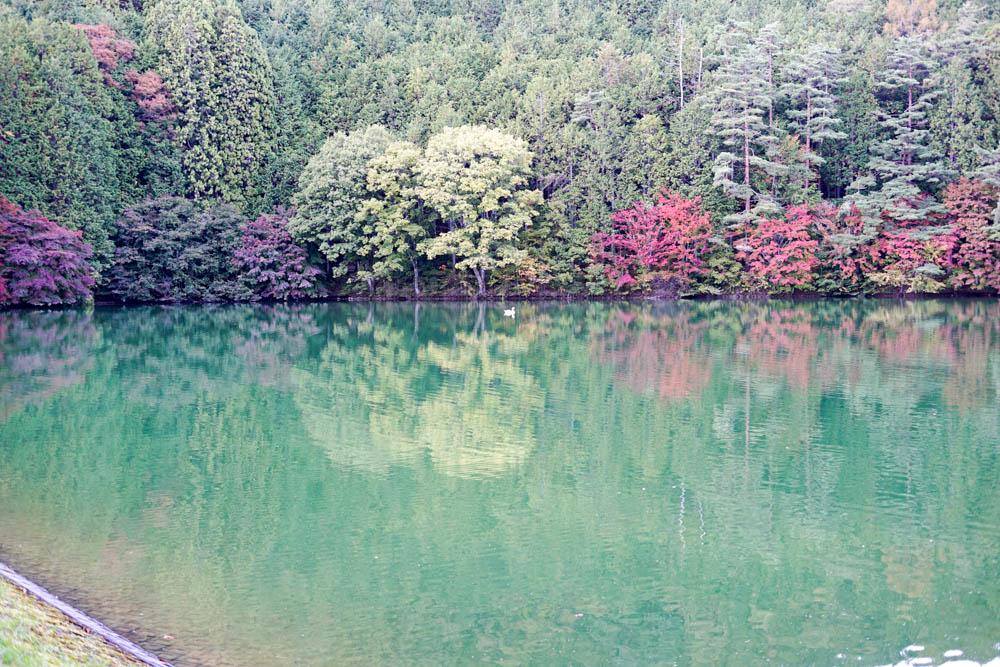 181028 yamanashi fujimi resort 49