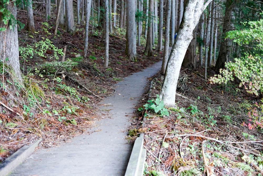 181028 yamanashi fujimi resort 51