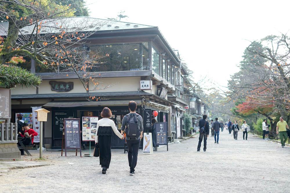 181113 kanazawa fukui toyama 025