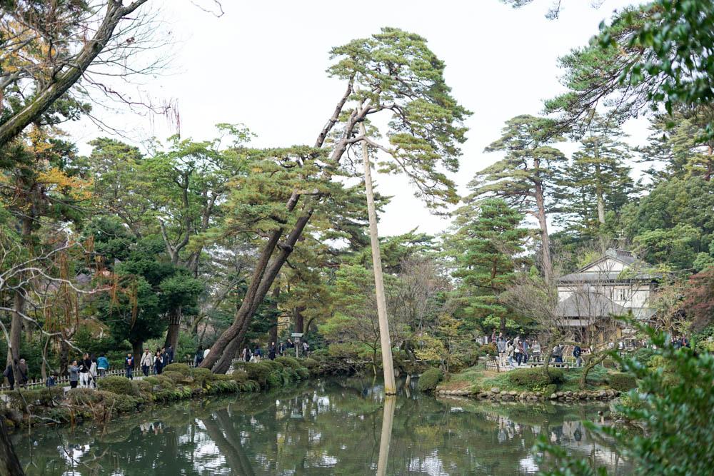 181113 kanazawa fukui toyama 046