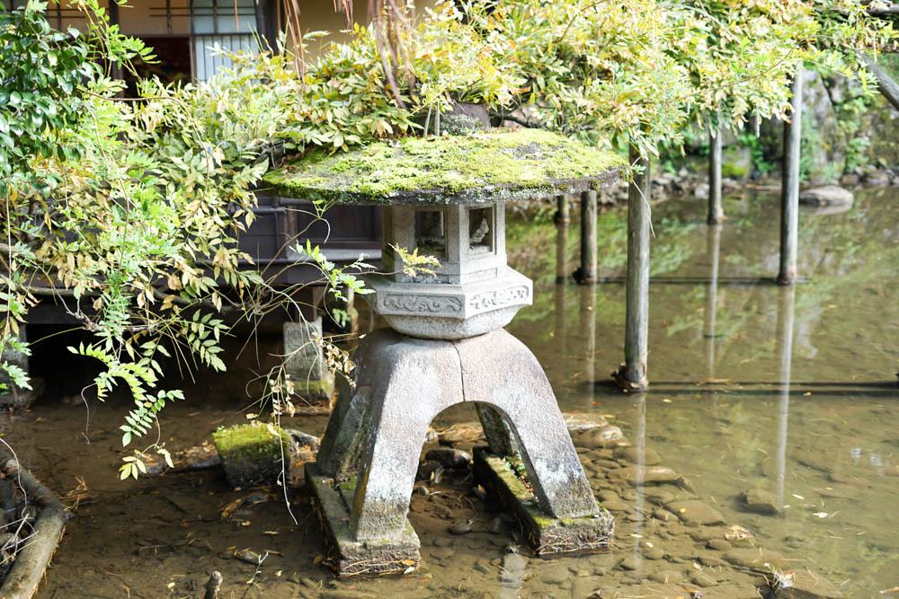 181113 kanazawa fukui toyama 047