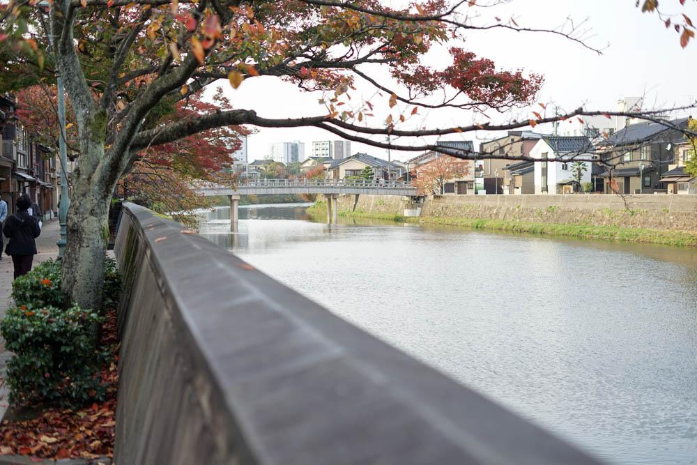 181113 kanazawa fukui toyama 065