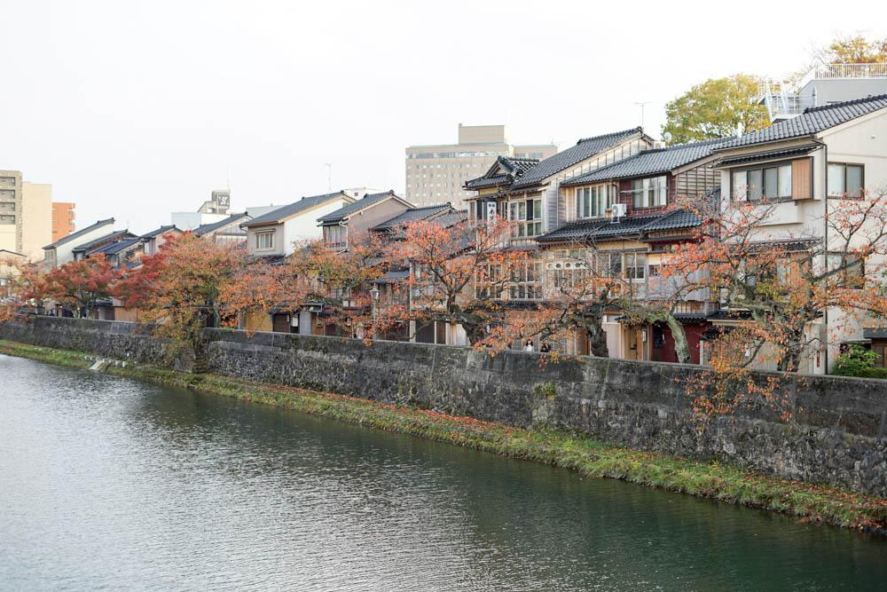 181113 kanazawa fukui toyama 076