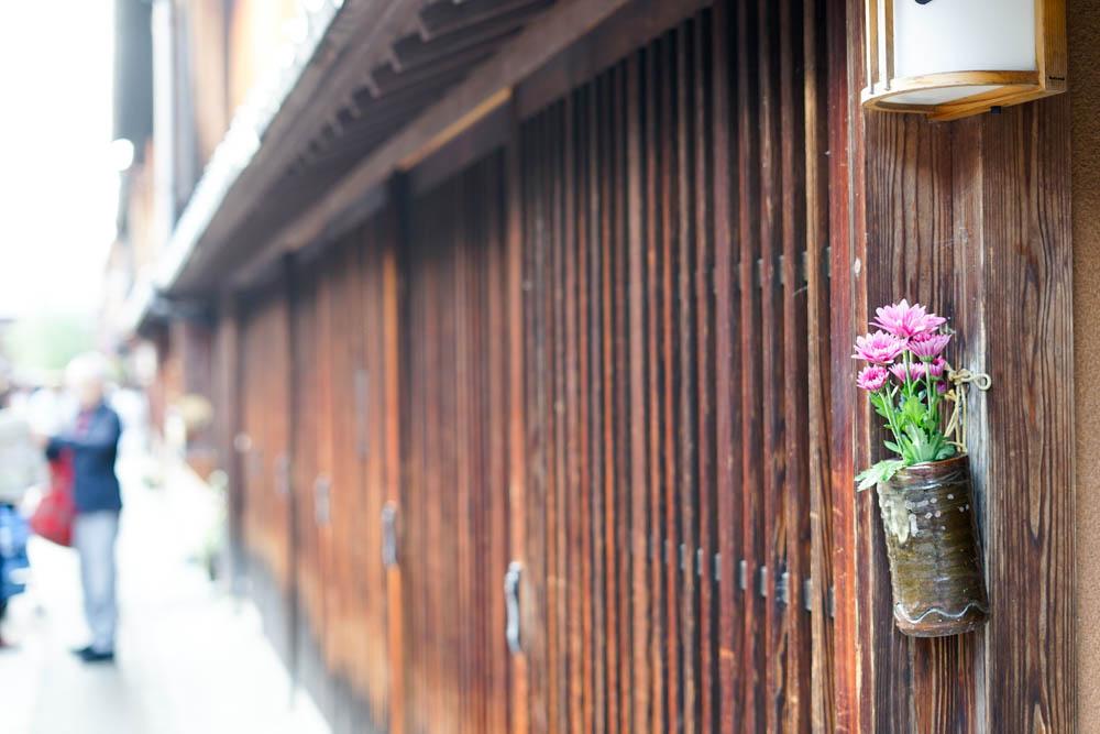 181113 kanazawa fukui toyama 082