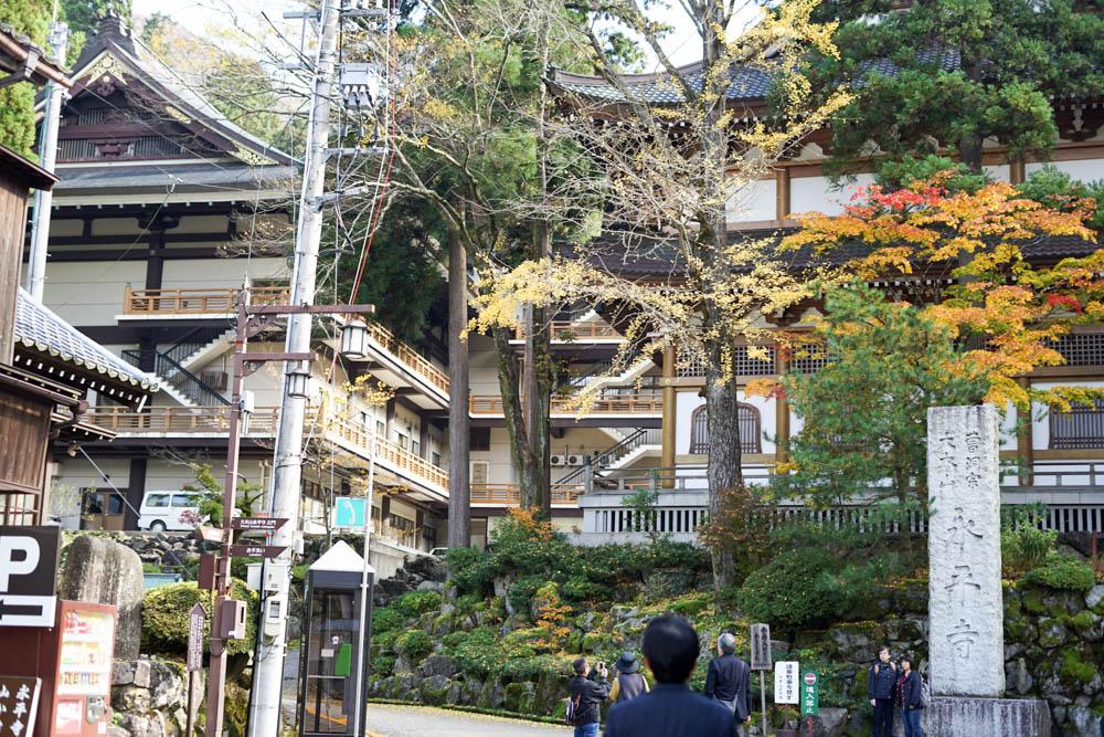 181113 kanazawa fukui toyama 153